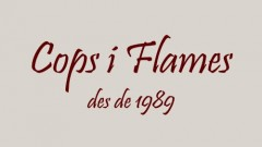 Cops i Flames (Doctor Dropo, The Mentres, Destemps, Montse Castellà, Papa:Noes...) 24/11/18